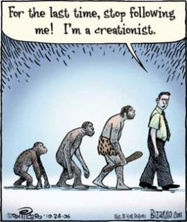 Stop Following Me - Creationist Evolution Theory