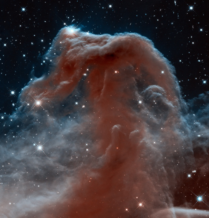 The Horsehead Nebula is a cold, dark cloud of gas and dust, silhouetted against the bright nebula IC 434. The bright area at the top left edge is a young star still embedded in its nursery of gas and dust. Image Credit: NASA, NOAO, ESA and The Hubble Heritage Team (STScI/AURA)
