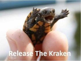 Release The Kraken 03