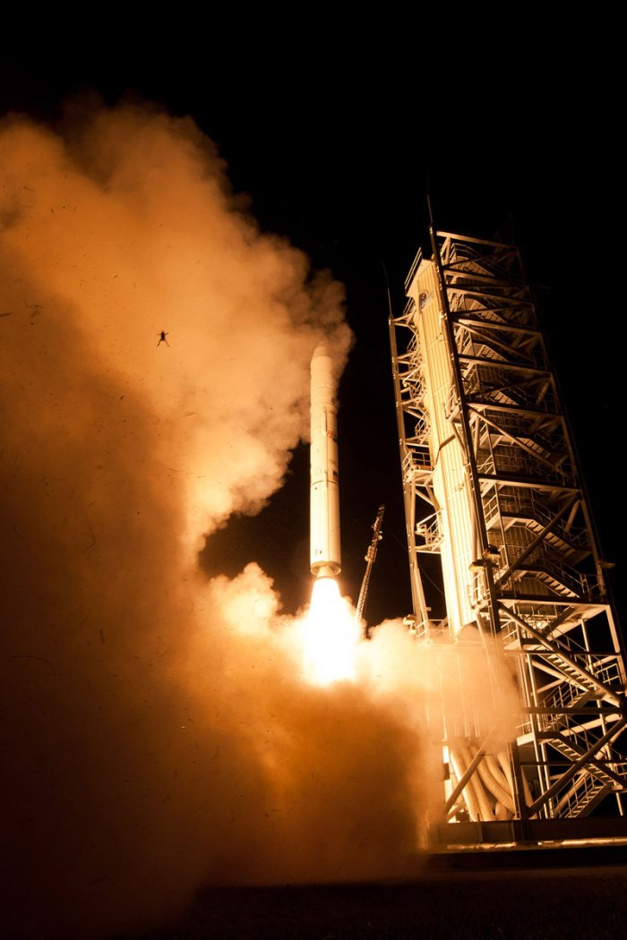 frog-nasa-photobomb-rocket-launch-one-giant-leap