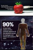 Random Factoids 08