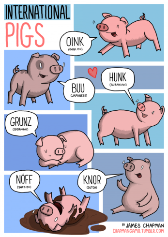 7-International-Pigs-by-James-Chapman-600x848