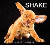 dogs-mid-shake-by-carli-davidson-3