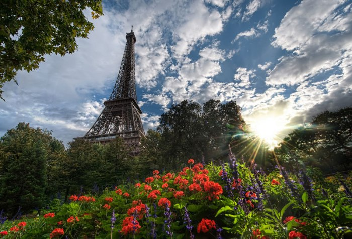 unique-view-of-eiffer-tower-from-below-garden-plants-trey-ratcliff