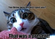 giantgag.com-you-threw-away-the-bird-i-gave-you-that-was-a-present-01