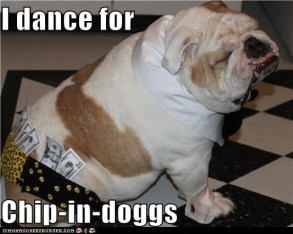I Dance For Chip-In-Doggs