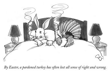 thanksgiving-pardoned-turkey-lost-sense-of-right-and-wrong